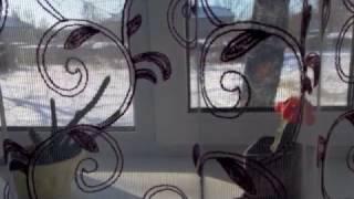 2-комнатная квартира в Николаевке в обмен на дом