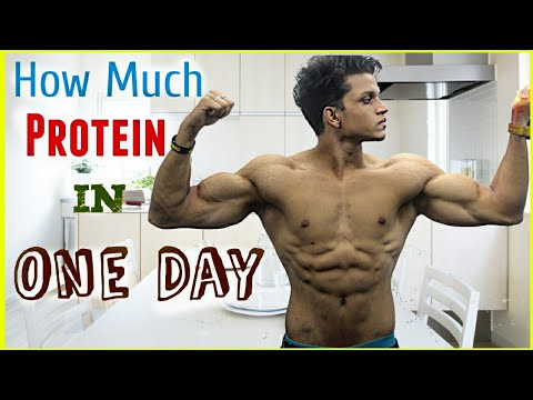 How Much PROTEIN You need in ONE DAY???