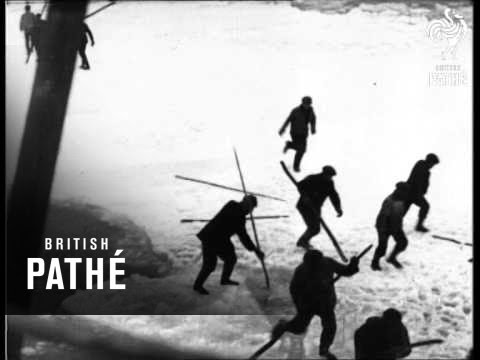 The Seal Hunters (1930)