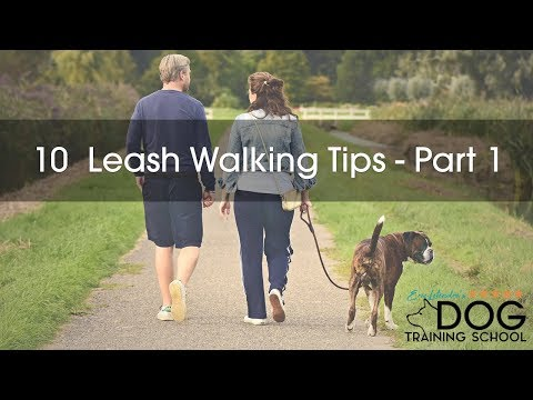 10 Ideas to Make Walking Great Again