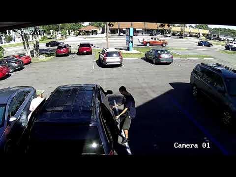Surveillance Video Captures West Marine Theft 11-7-17
