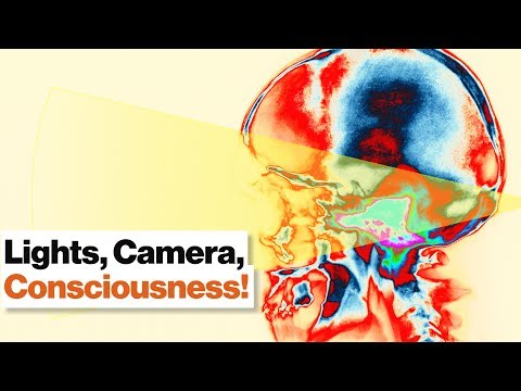 Consciousness Is a Narrative Created by Your Unconscious Mind | Dean Buonomano