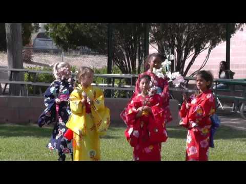 Palm Vista Elementary School International Festival
