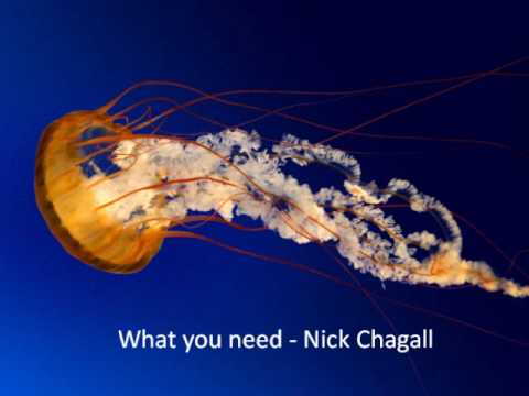 What you need - Nick Chagall