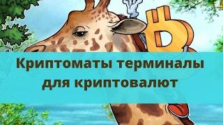 В РОССИИ Криптоматы Blockchain технологий с 2017 года