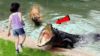 मगरमछ इस लड़की को पकड़ कर पानी में ले गया   इसके बाद जो हुआ उस पर किसी को विश्वास नहीं हुआ   Sad Story