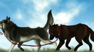 Аниме волки пары