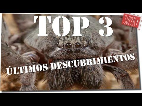 TOP 3. Descubrimientos Actuales