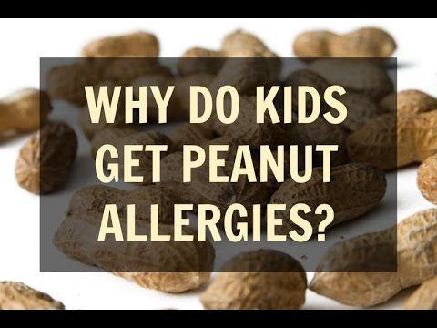 Why Are So Many Kids Allergic to Peanuts? (The Truth About Peanut Allergies)