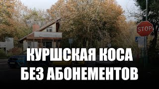 Многоразовые абонементы на посещение Куршской косы отменят с 1 января 2022 года
