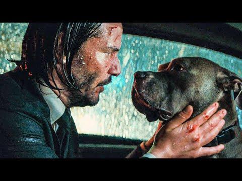 JOHN WICK 3 All Movie Clips + Trailer (2019)