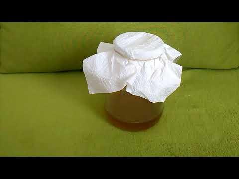 Как залить чайный гриб в домашних условиях, чтобы