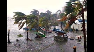 #159 Ураган Ирма.Флорида. Шок?! Паника?! Готовимся...