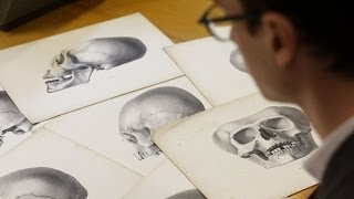 Facts About Racist Science Of Phrenology