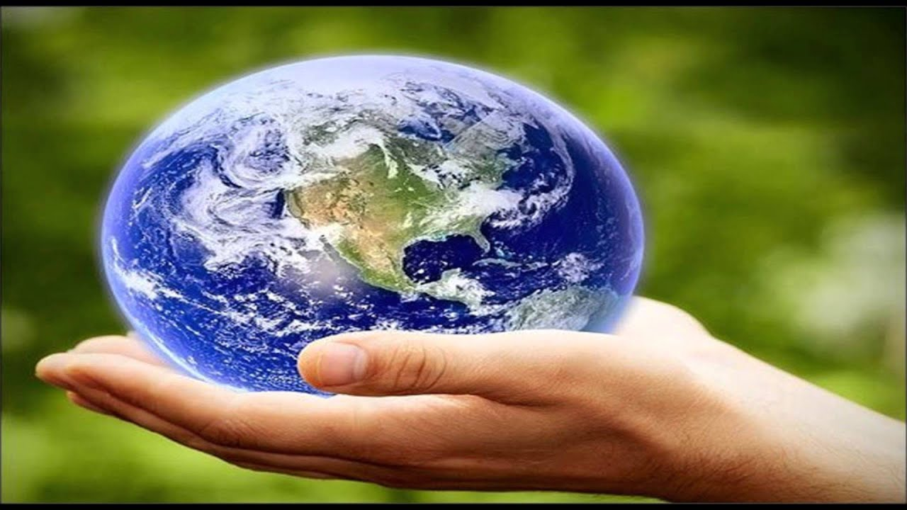 ways to save the earth essay