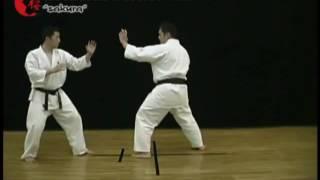 49 Кёкусинкай Карате  Защита от связки Б  Урок 49