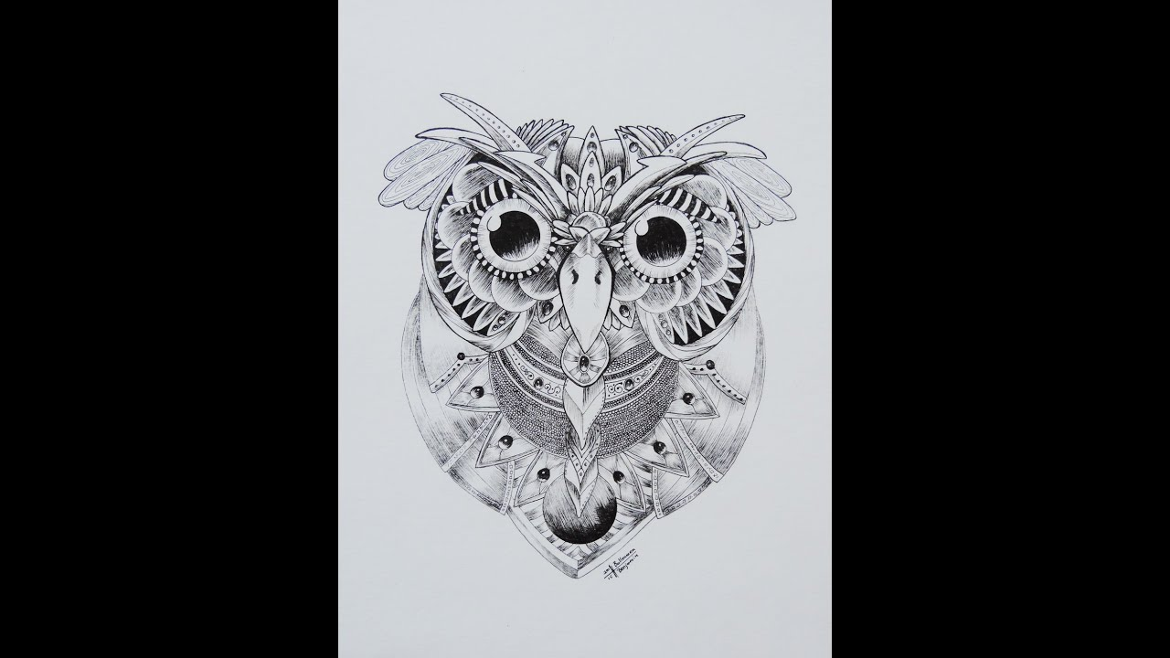 Dessin d 39 un hibou art youtube - Dessins hibou ...