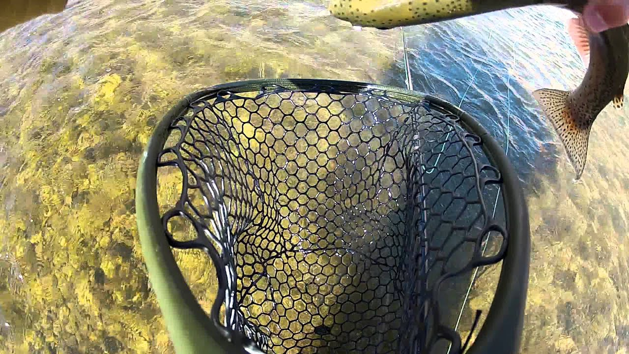 Nomad nets carbon fiber fly fishing net youtube for Fiber in fish