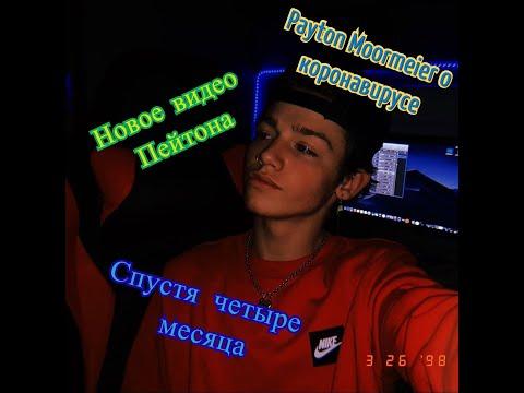Новое видео Payton Moormeier ПОЧЕМУ ПЭЙТОН НЕ ВЫПУСТИЛ LOVE LETTER ПЕРЕВОД ВИДЕО НА РУССКИЙ 🌹