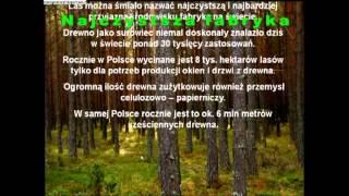 Las - film edukacyjny