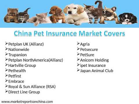 China Pet Insurance Market by Manufacturers, Type and Application Regions and Forecast to 2022
