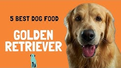 5 Best Dog Food For Golden Retriever in 2020.
