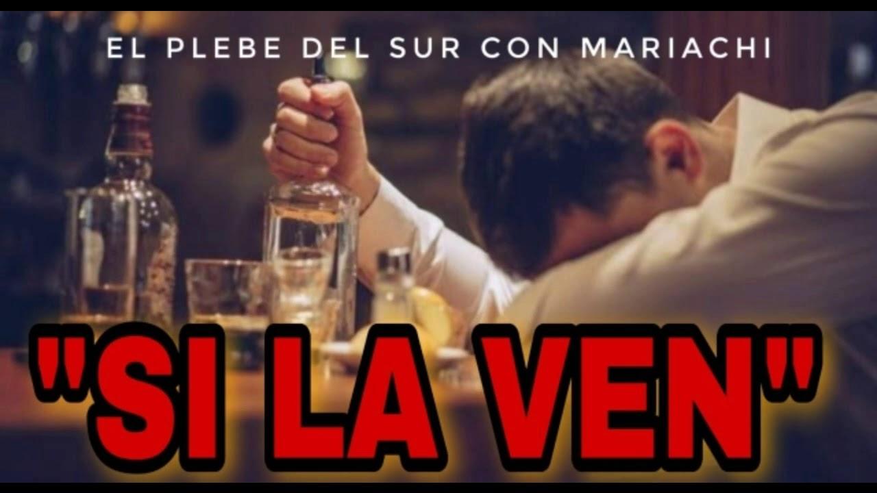 SI LA VEN/VERSÍON MARIACHI/EL PLEBE DEL SUR