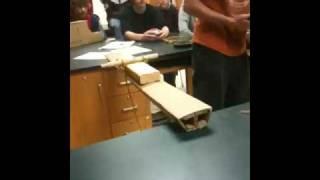 Cardboard Bridge Collapse