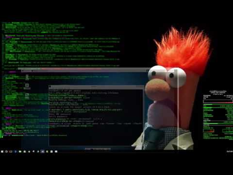 Install VNC Viewer on Raspberry Pi with Kali Linux