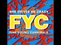 Thumbnail for FINE YOUNG CANNIBALS   She drives me crazy 1989