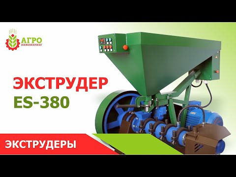 Твердые бытовые отходы. Утилизация и переработка бытовых