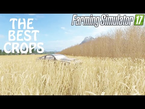 The Best Crops To Have in Farming Simulator 2017 | Listen Carefully | PS4 | Xbox One