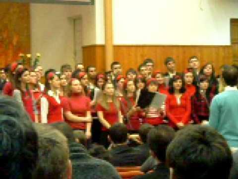 tinerii biserici filadelfia petrosani
