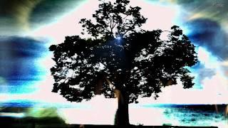 Albinoni - Adagio in G Minor (Tomaso Albinoni) Klassische Musik - Classical Music - Klasik Müzik - Stafaband