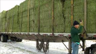 Hay load from Alberta Canada to Texas during the drought.