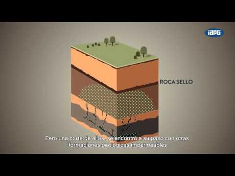 origen y utilidad de los hidrocarburos