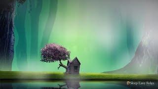 Deep Calming Sleep, Healing Love Meditation Music, Peaceful Music for Insomnia and Anxiety ...