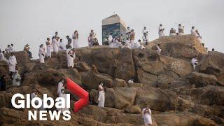 Haj: Pilgrims scale Mount Arafat for sacred ritual in Mecca