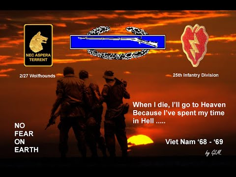 Wolfhounds 2nd Plt Bravo Co 2-27 25th ID Vietnam '68-'69.wmv