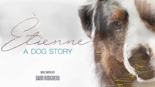 Étienne - A dog story
