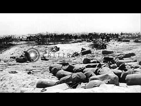US troops capture Roi-Namur island in Kwajalein Atoll, Marshall Islands during th...HD Stock Footage