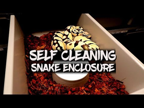 Self Cleaning Snake Enclosure!