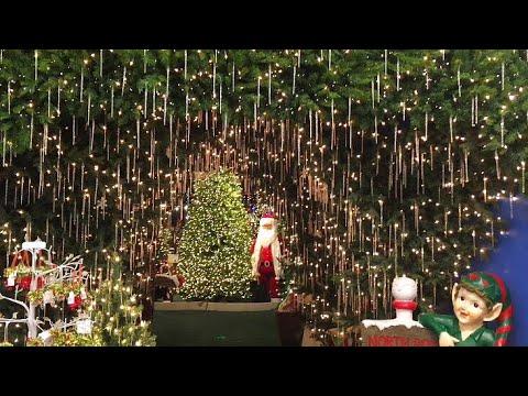 family vlog christmas 2017 shop with us at roberts christmas wonderland - Christmas Tree Shop Florida