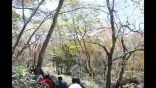 Hallasan, jeju island, south korea part 7
