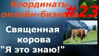 Урок 23. Священная корова