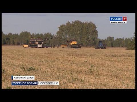 Единственная в Новосибирской области девушка-тракторист вышла в поля Каргатского района