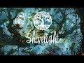 Download Bwoy De Bhajan - Northern Quartz Aurora MP3 song and Music Video