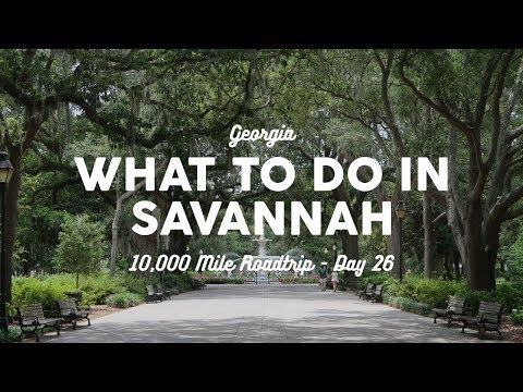 What to do in Savannah | 10K Road Trip Vlog Day 26