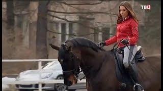 Королева Ринопластики - Сафонова Любовь Николаевна.  Ринопластика, лошади, стиль жизни.