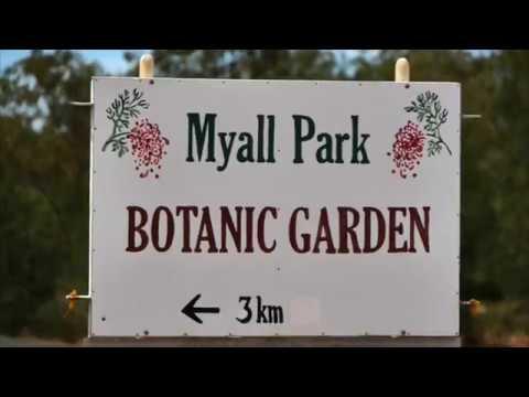 Myall Park Botanic Garden in Glenmorgan Queensland